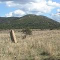 Laconi, Cromlech e menhir di Is Cirquittus