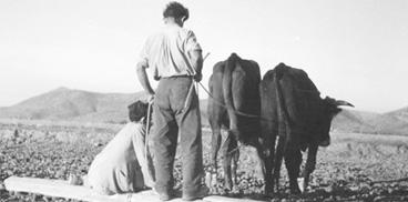 Werner Bischof, Sardegna, 1950